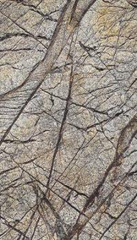 Rainforest Brown obklad z kamennej dyhy